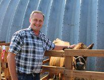 MPP (Timiskaming-Cochrane) John Vanthof was admiring the animals on display during the annual Fall Fair.