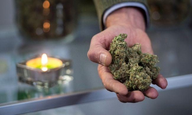 Marijuana FILES Sept. 12/17