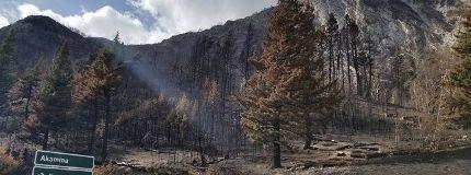 Kenow wildfire inside Waterton