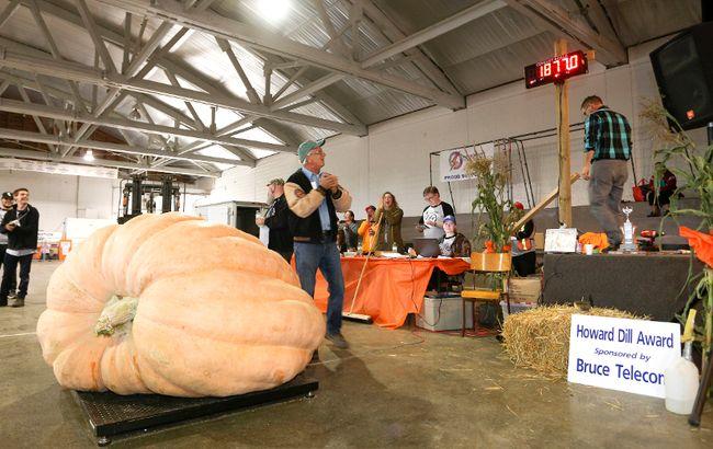 Last year's winning pumpkin at Pumkinfest. (Sun Times files)