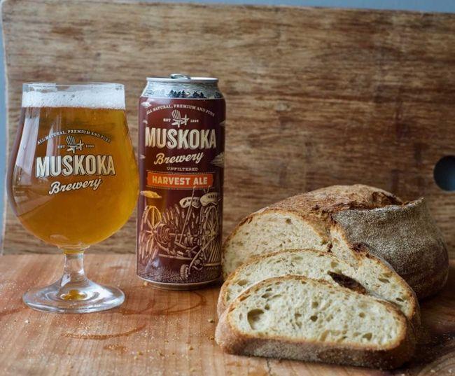 Harvest Ale Sourdough
