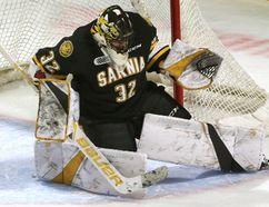 Justin Fazio of the Sarnia Sting (Free Press file photo)