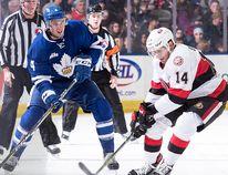 Jim O'Brien has been reassigned to the Belleville Senators by the parent Ottawa Senators. (Toronto Marlies photo)