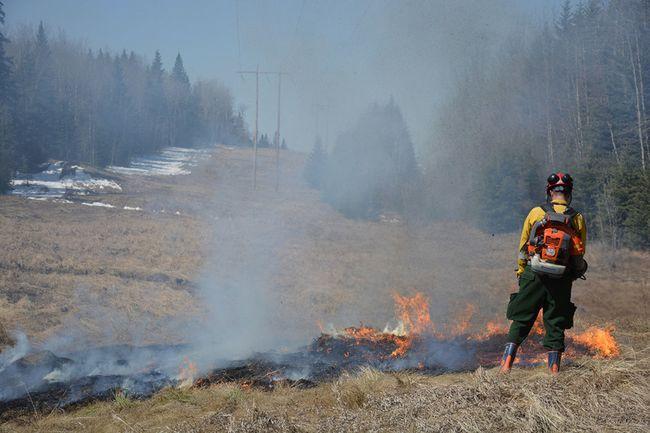 Alberta Wildfire and the Whitecourt Fire Department participate in a hazard reduction burn near Whitecourt on April 27 (Taryn Brandell | Whitecourt Star).