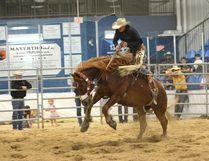 The Mayerthorpe rodeo on May 27. (Peter Shokeir | Mayerthorpe Freelancer)