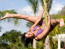 Kesha hangs off a palm tree.