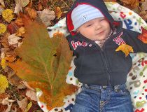 Guinness World Record Oak Leaf