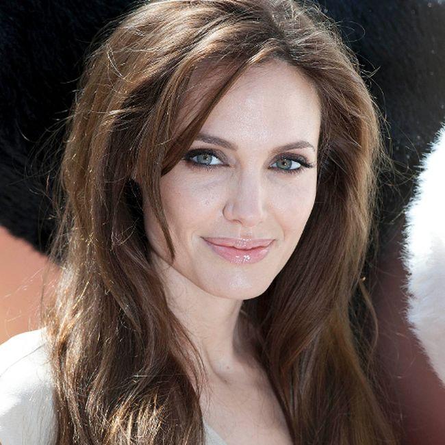 "Angelina Jolie. (<a href=""http://www.wenn.com"" target=""newwindow"">WENN.com</a>)"