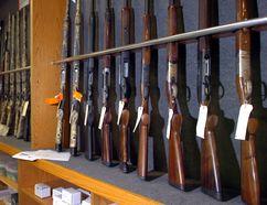 A rack of 'long guns' and rifles. (QMI Agency file photo)