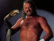 Jake 'The Snake' Roberts