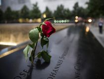 A wilting rose at 9/11 memorial