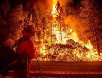 CALIF FIRE