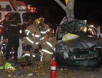 car vs. tree northeast calgary