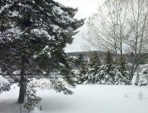 New Brunswick wnow