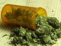Marijuana pot weed cannabis