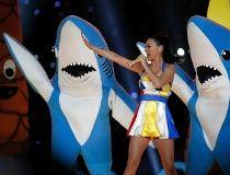 katy perry shark