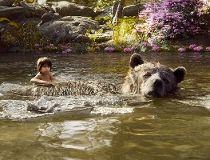 The Jungle Book 7