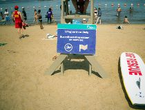 Petrie Island lifeguards