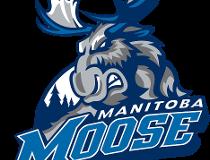 Manitoba moose logo filer