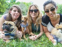 Three Dogs Squad
