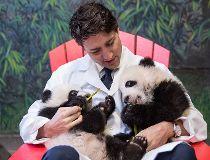 Trudeau holds pandas