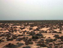 Libya file