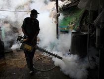 Bangkok zika