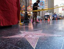 Trump Hollywood Star