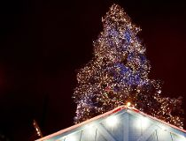 Montreal Christmas tree