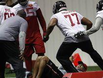 Atlanta Falcons defensive tackle Ra'Shede Hageman