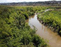 Tijuana River