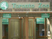 Toronto Zoo entrance gate