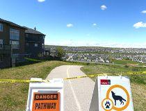 Coyotes signs at Panorama Hills