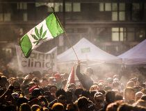 4/20 cannabis