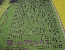 corn maze bioware